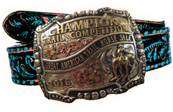 Great American Ranch and Trail Horse Sale