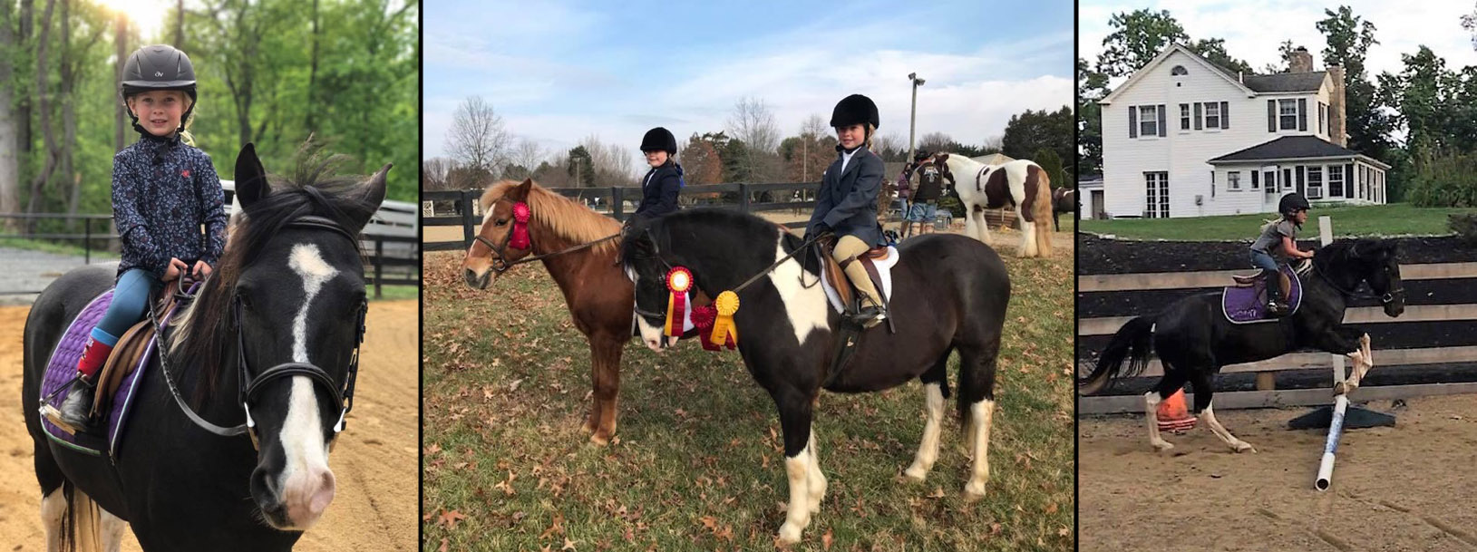 Testimonials and Happy Trails – Great American Ranch and Trail Horse ... 9506a2f090ee