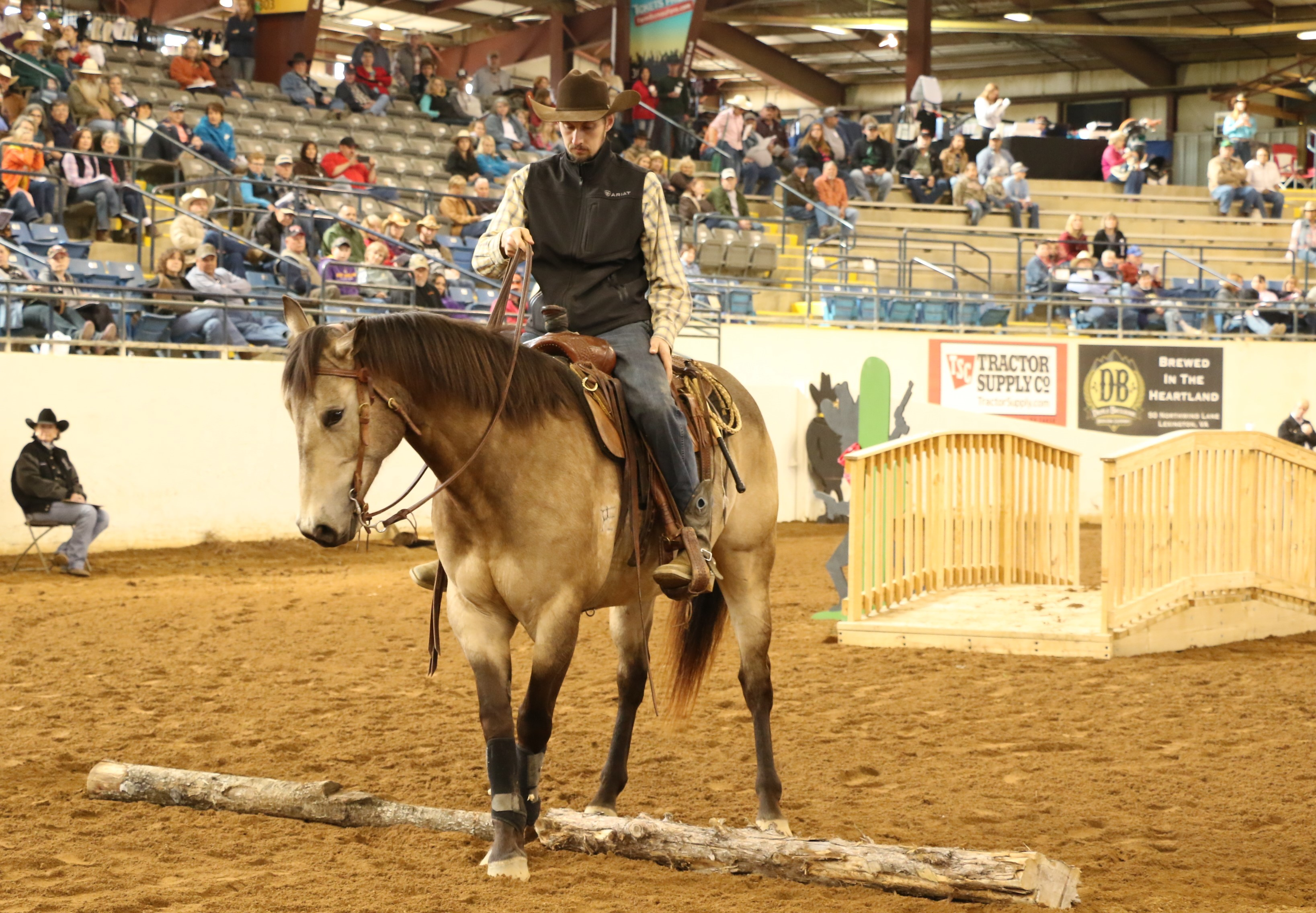 Great American Ranch Horse Competition